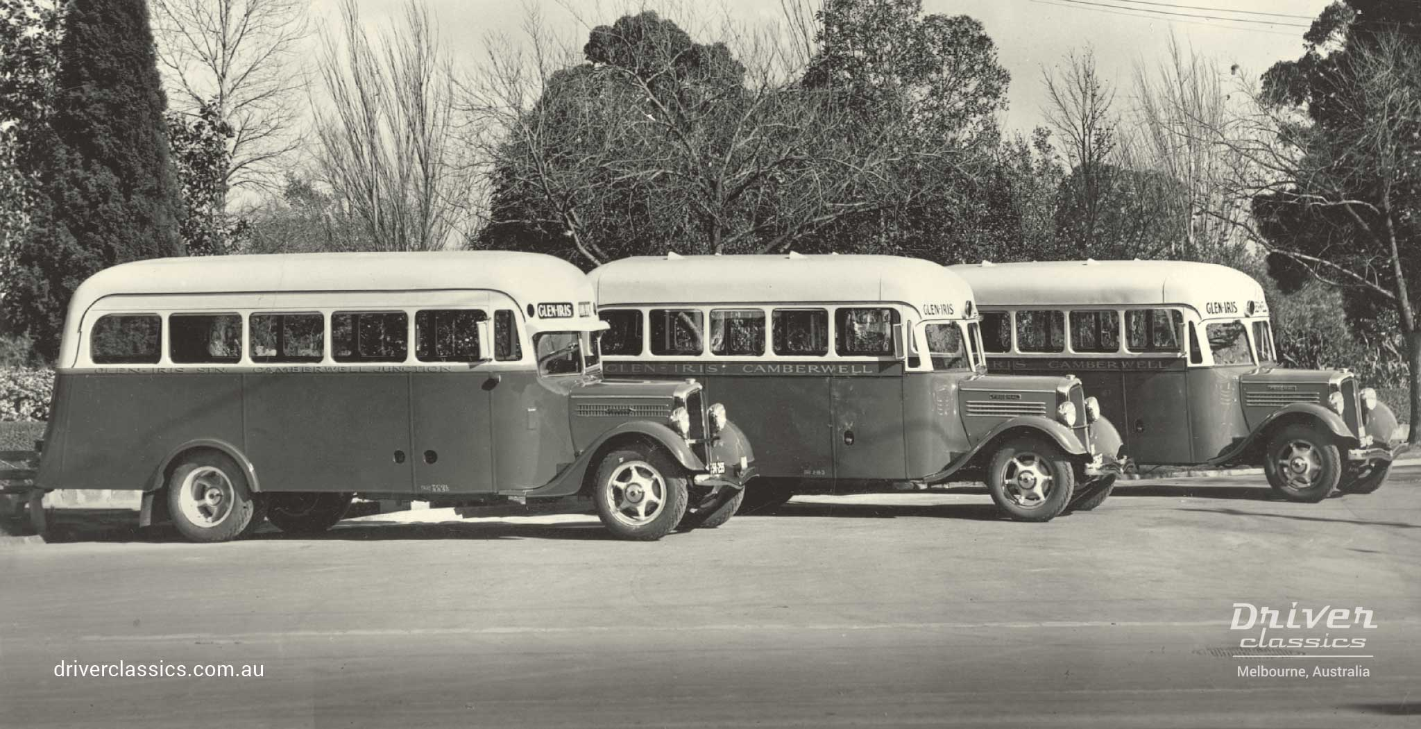 Federal Buses, 3x, each with Grummet 12 passenger body.