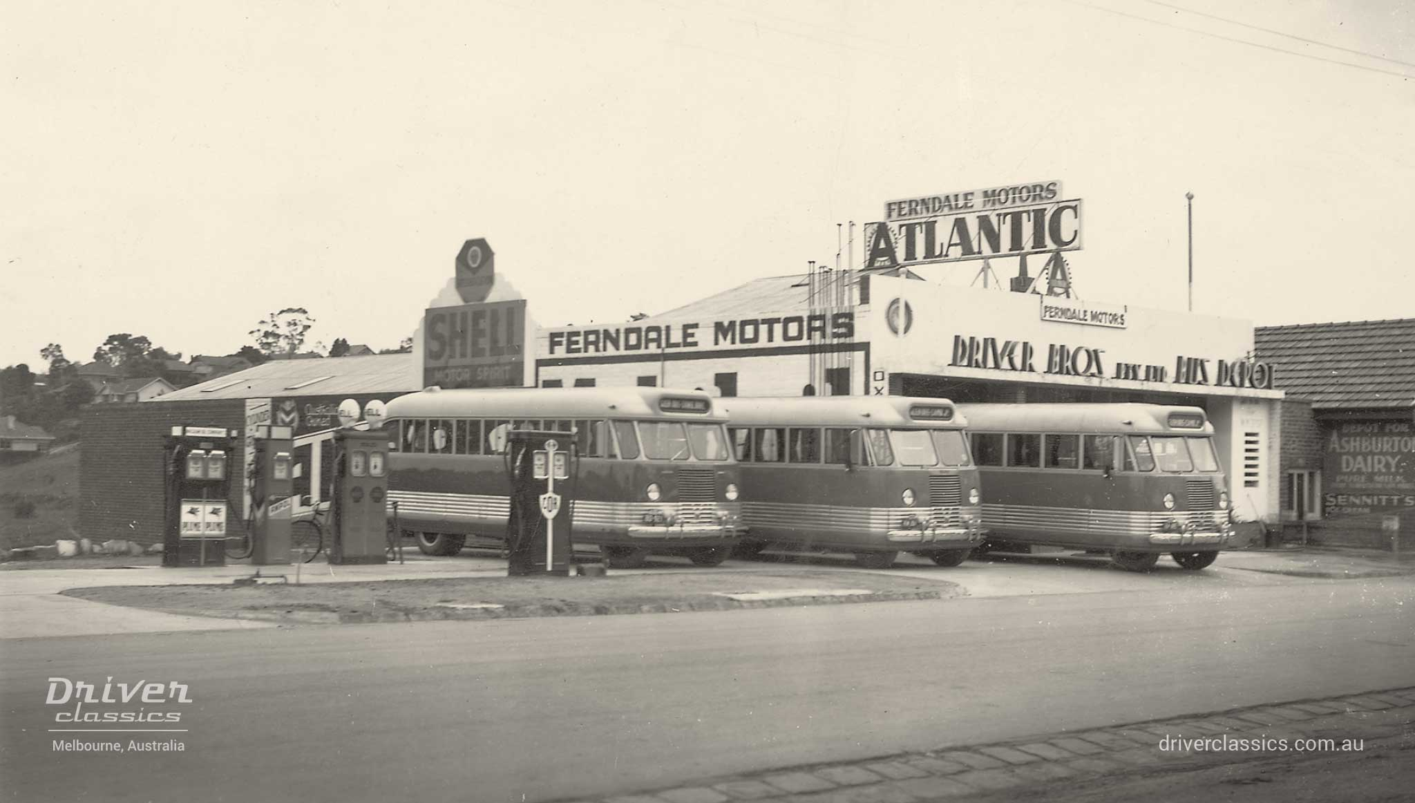 Bedford OB buses, at Driver Brothers depot, photo taken circa 1950