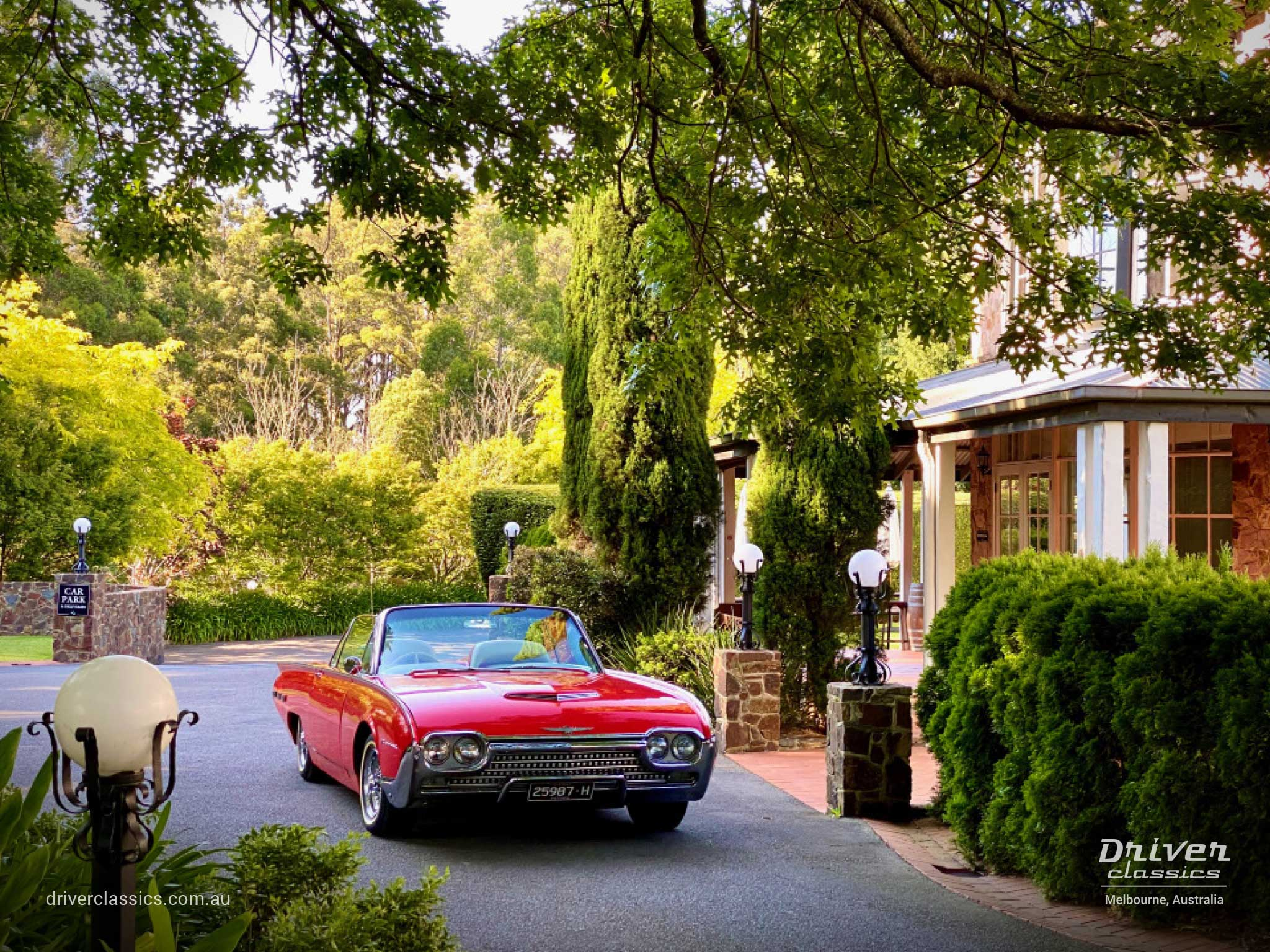 Ford Thunderbird Roadster 1962 version, front, dandenong ranges, Photo taken Dec 2019